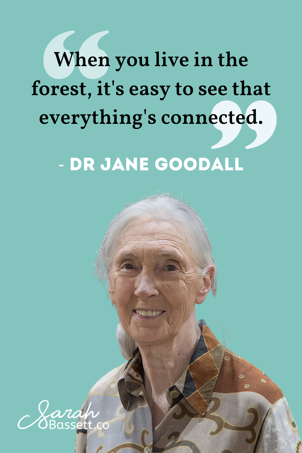Environmental Activism Conservation Quote Jane Goodall